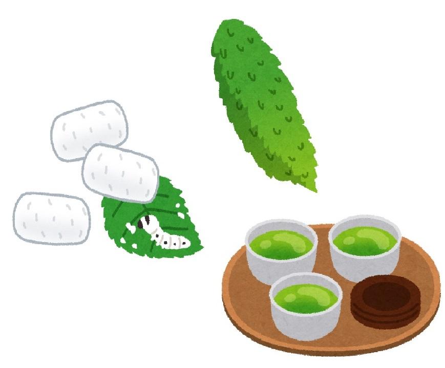 HbA1cを下げるのに効果的と言われる桑の葉茶とゴーヤ茶。できるだけたくさん飲むのがおすすめ!